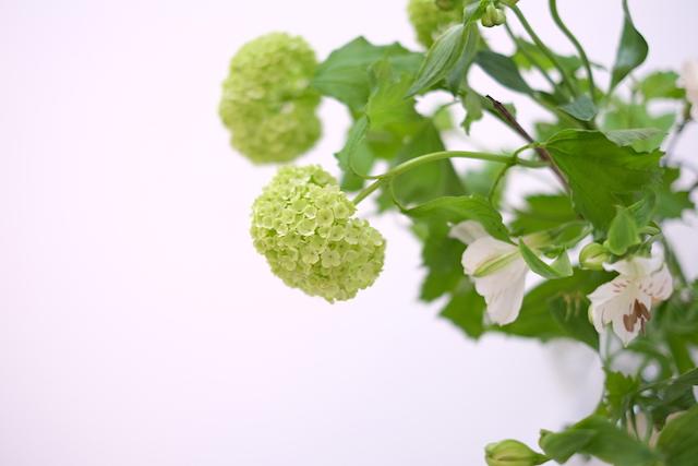 Vihrea kimppu 3 : Kauniit neliot